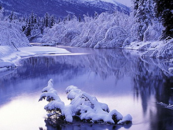 Зима повернись