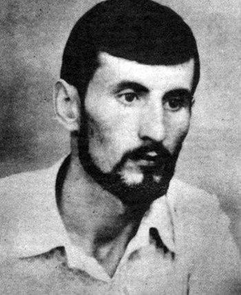 Михайло Дубов