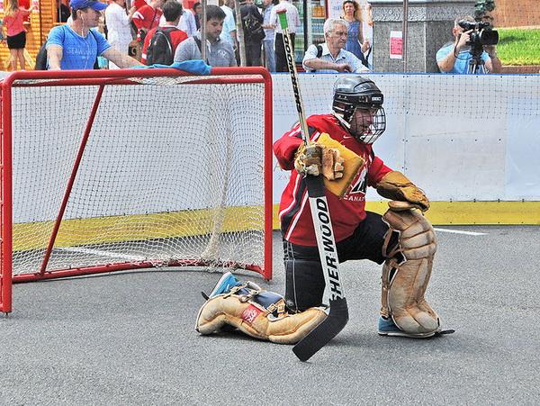 Воробус хокеїст