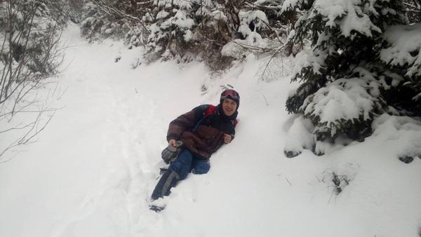 Воробус у снігу
