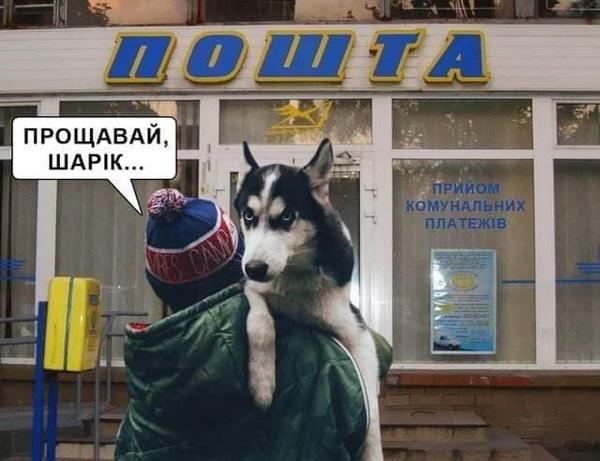 Собака на Укрпошті