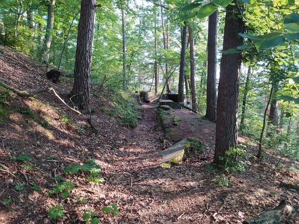 Форт у лісі