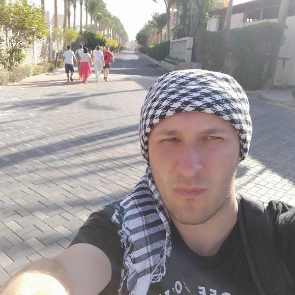 Воробус у Єгипті