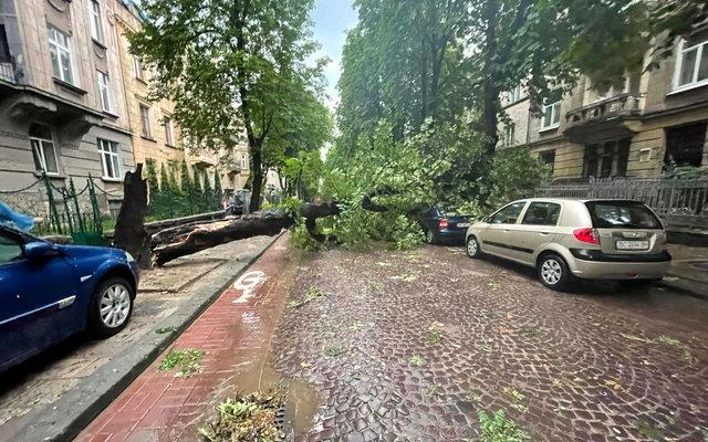 наслідки грози у Львові