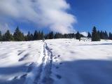 Зимовий похід